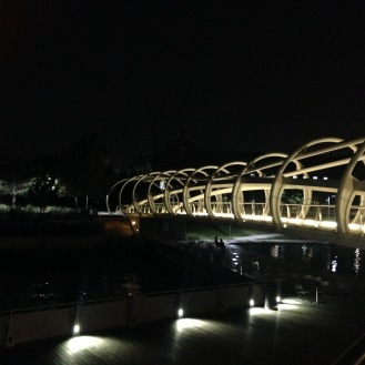 This bridge is gorgeous