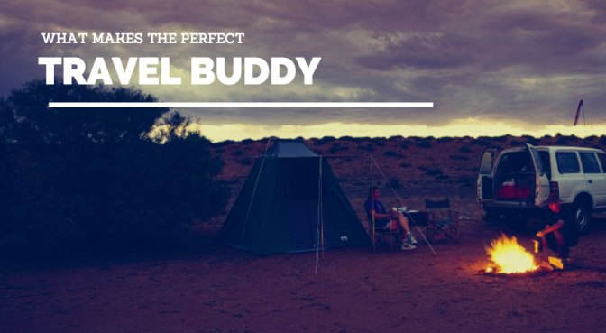 What Makes The Perfect Travel Buddy?
